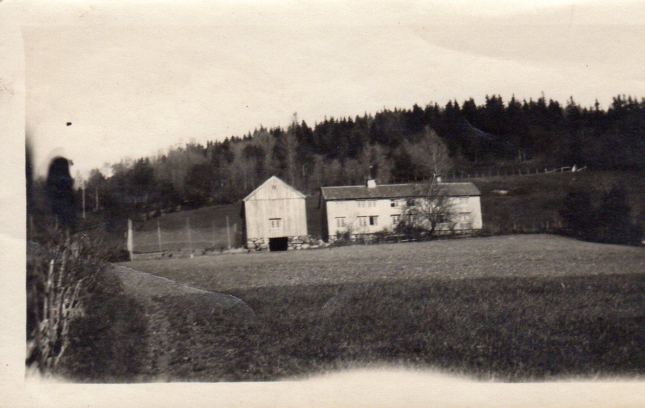 Dette er det eldste bilde vi har av Ulvenaune. Det kan ikke tidfestes nøyaktig, men vi ser ingen kabelstolper, så det er i alle fall tatt før elektrisiteten kom til Sjøbygda, kanskje rundt århundreskiftet 1800-1900. Husa er de som ble bygd etter at jordeiendommen ble skilt ut fra Ulvin Øvre i 1854.