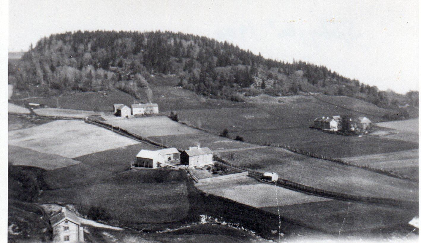 Sjøbygda i 1930-åra med Ulvenaune øverst. Til høyre ligger gården Forr og til venstre Tronhusaune. Neders til venstre ser vi litt av stua i Nesbakken, et lite selvstendig bruk på ca. 5 mål. Det er borte nå, og jorda er lagt til Ulvenaune. Husa er de samme som da Nils vokste opp på Ulvenaune. Bak fjøsbygninga ser vi et relativt stort bygg med vedskjul i første etasje. I andre etasje var det bl.a. snekkerverksted. Denne etasjen ble kalt «galleriet».