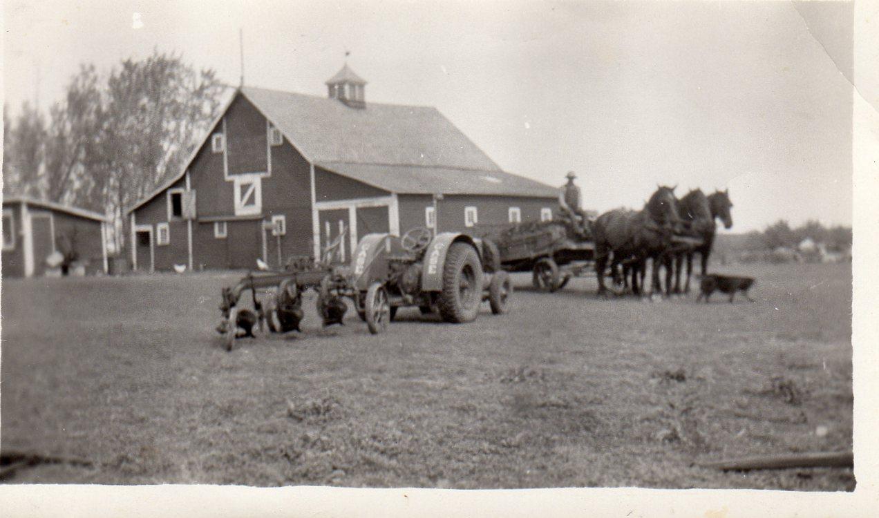 Den gamle og den nye tid. Traktoren skal ta over tungarbeidet på farmen.