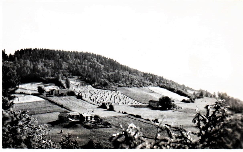 Sjøbygda i gamle dager. Ulvenaune øverst, slik der var da Nils ble konfirmert. Legg merke til at kornet blir tørket på staur. Det var lenge før skurtreskenes tid!